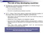 the role of key developing countries