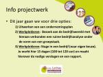 info projectwerk
