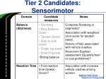 tier 2 candidates sensorimotor