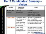tier 2 candidates sensory vision