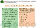 strategic working areas