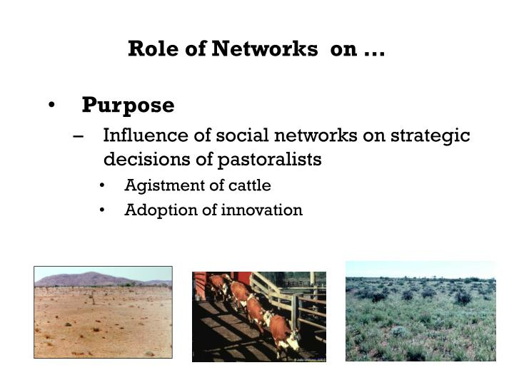 Role of networks on