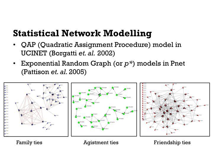 Statistical Network Modelling