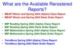 what are the available rerostered reports