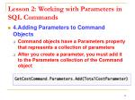 lesson 2 working with parameters in sql commands5