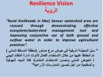 resilience vision