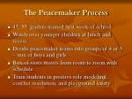 the peacemaker process