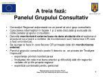 a treia faz panelul grupului consultativ1