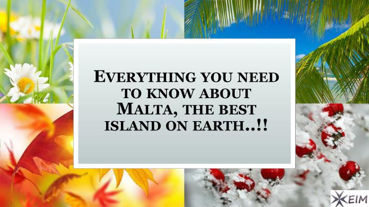 everything you need to know about malta the best island on earth n.