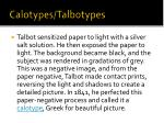 calotypes talbotypes