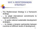why a mediterranean strategy