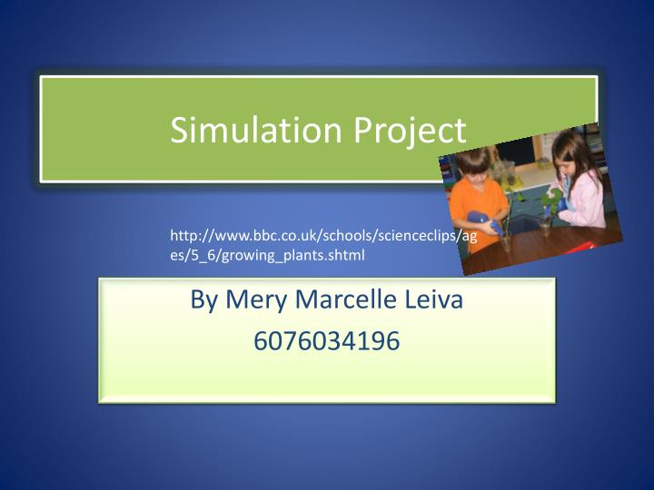 simulation project n.