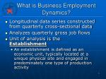 what is business employment dynamics