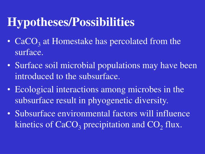 Hypotheses/Possibilities