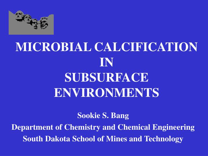 microbial calcification in subsurface environments n.