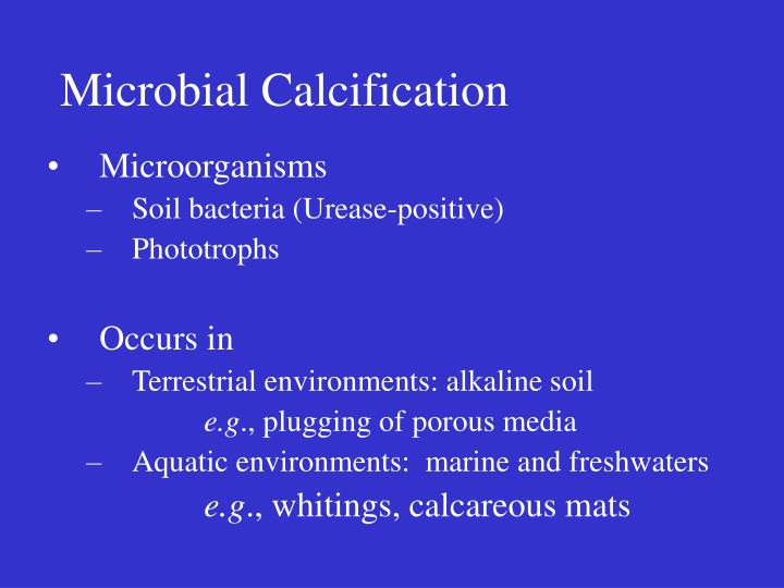 Microbial calcification