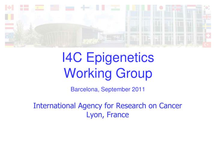 i4c epigenetics working group n.