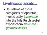 livelihoods assets