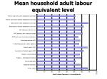 mean household adult labour equivalent level