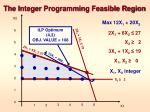 the integer programming feasible region