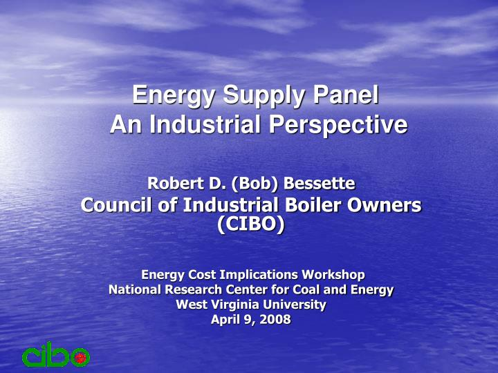 energy supply panel an industrial perspective n.