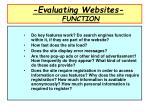 evaluating websites function
