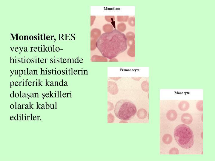 Monositler,