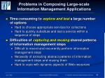 problems in composing large scale information management applications