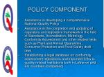 policy component