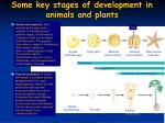 some key stages of development in animals and plants