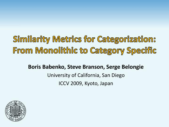 similarity metrics for categorization from monolithic to category specific n.