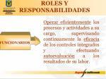 roles y responsabilidades2