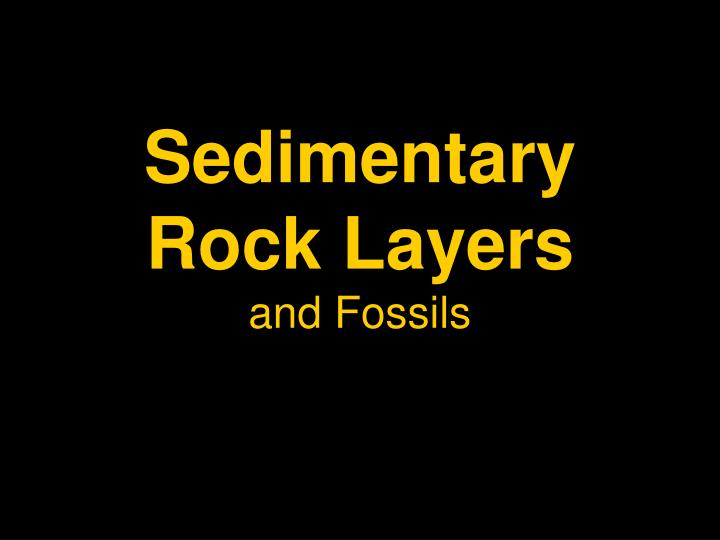 sedimentary rock layers and fossils n.