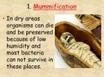 1 mummification