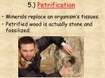 5 petrification