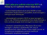 opis i plan prac pakietu roboczego wp 3 c d