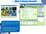 what is shoebox records