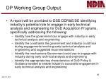 dp working group output
