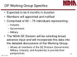 dp working group specifics