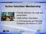 active volunteer membership