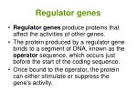 regulator genes