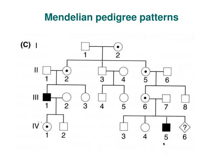 Mendelian pedigree patterns