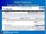 mesh database search by major mesh heading