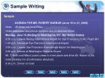 sample writing1
