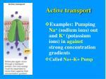 active transport1