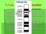 1 1 2 a nivel molecular
