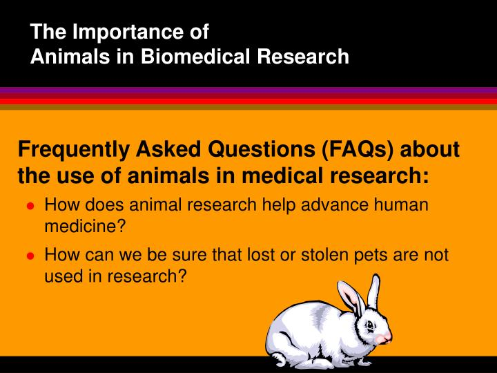 use of animals in research The use of animals in scientific research remains a vital tool in improving our understanding of how biological systems work both in health and disease, and in the development of new medicines.
