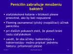 penicil n zabra uje mno eniu bakt rii