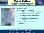 cattail habitat improvement project3