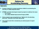 options for accelerating recovery2